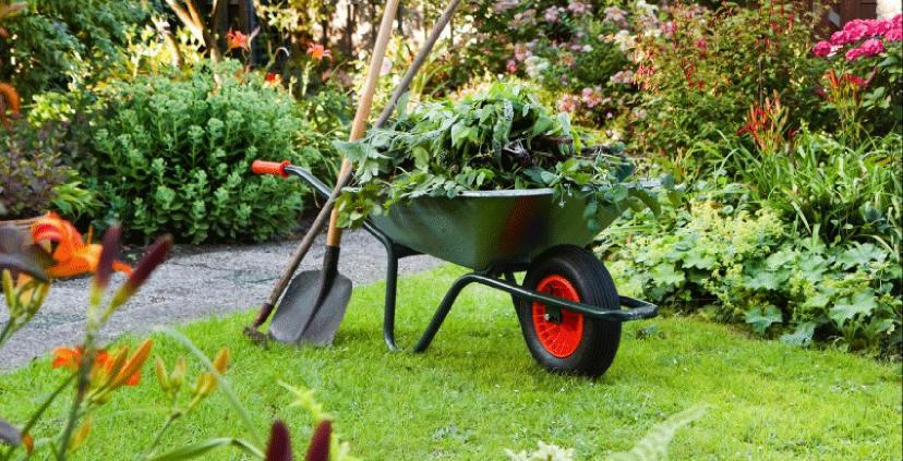 bahçıvan firmaları, bahçe bakımı bahçıvan