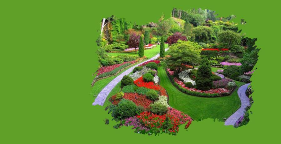 bahçe düzenleme örnekleri, bahçe bakımı yapan firmalar istanbul
