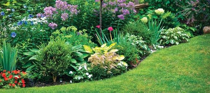 bahçe düzenleme örnekleri fiyatları, 1 günlük bahçıvan hizmetleri fiyatı, 1 günlük 1-2 metre ağaç budama fiyatları, 10 m² çim serme fiyatları, 20 m² çim serme fiyatları, 50 m² çim serme fiyatları, 3 - 7 metre boyunda ağaç budama vinçli fiyatları, ağaç budama vinçli fiyatları, 50 m² alanda çim biçimi fiyatları, 30 m² yeni bahçe tasarlama fiyatları