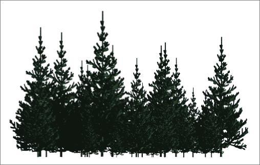 Ağaç budama kesim işleri
