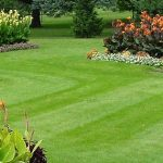 Bahçe bakımı yapan firmalar
