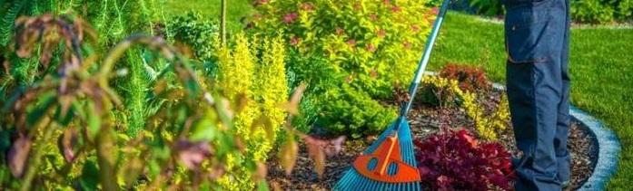 Bahçe Bakım Zamanları