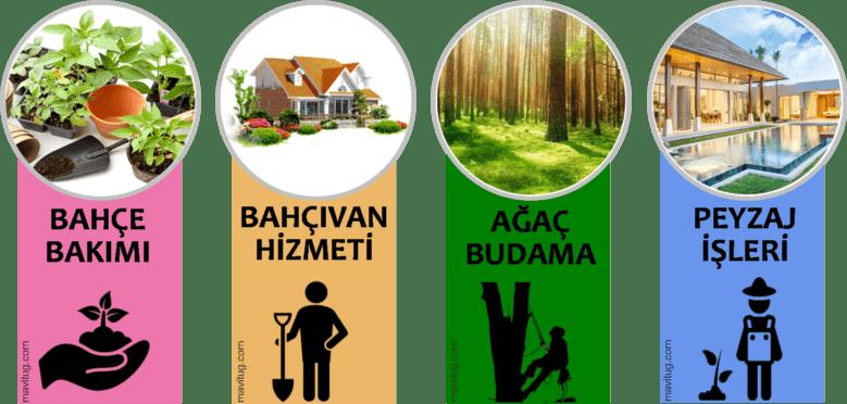 bahçe bakımı, bahçıvan hizmetleri, ağaç budama, peyzaj işleri