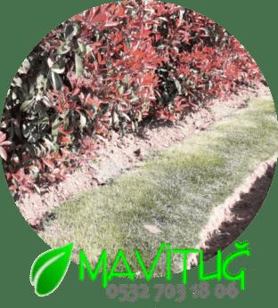 Üsküdarda Bahçe Bakımı Yapan Firma, Üsküdar Bahçe Bakım Firması, Üsküdar bahçe bakım şirketleri