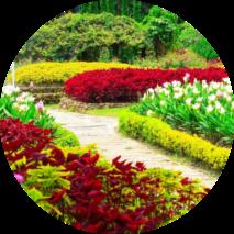 aylık bahçe bakımı istanbul
