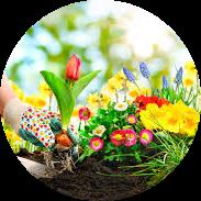 periyodik bahçe bakımı