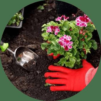 istanbul günlük bahçıvan kiralama fiyatları